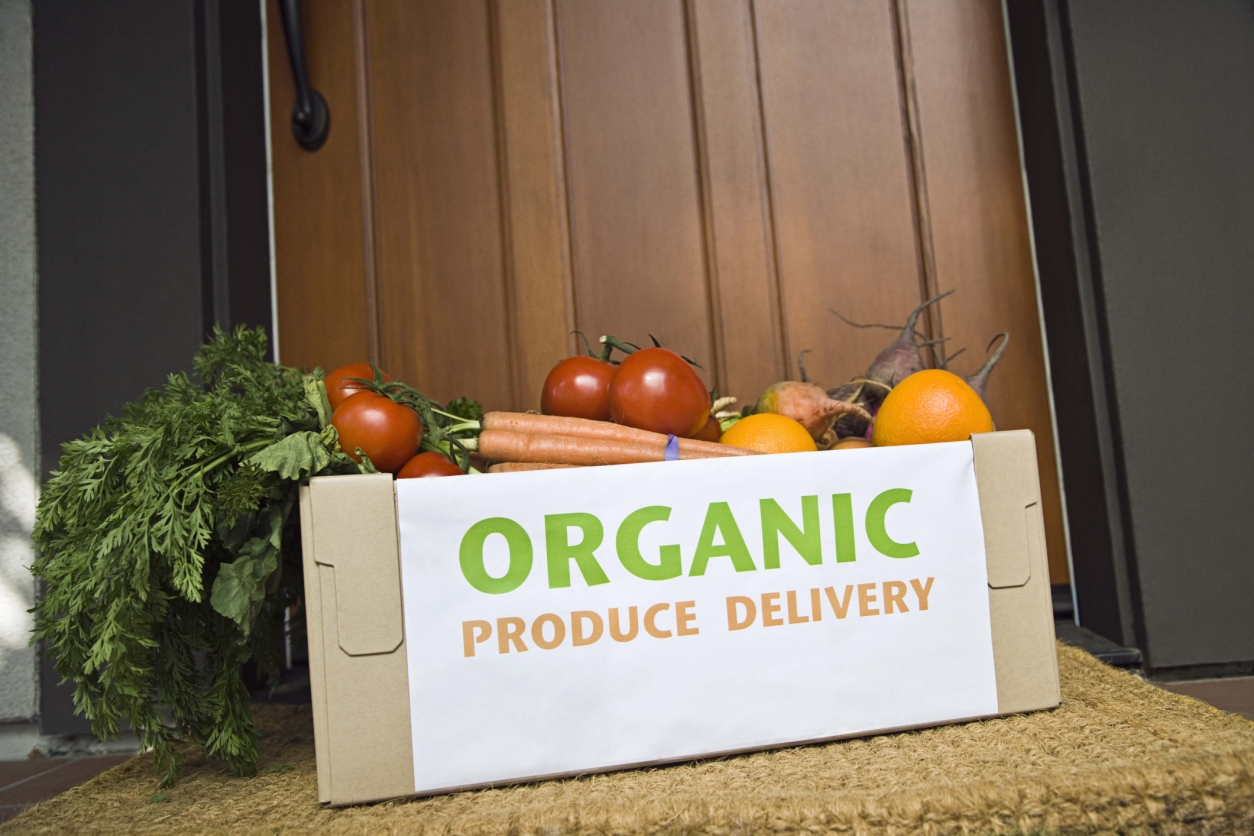 Grow your own organic food for less