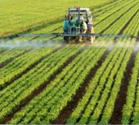 Industrial farming uses chemicals
